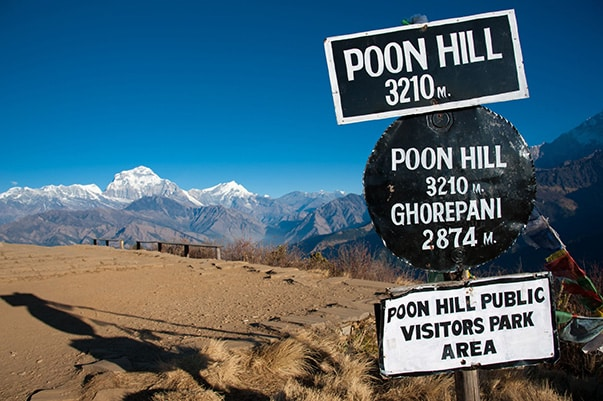 poonhill-1